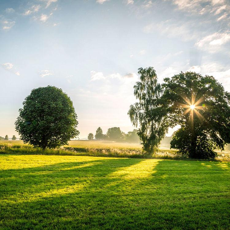 Land Natur 3